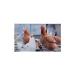 Zerbino da interno decorato gallina